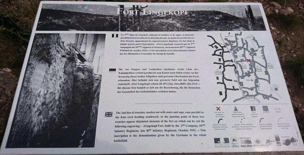 Le champ de bataille du Linge (1ère partie) Dsc_0210