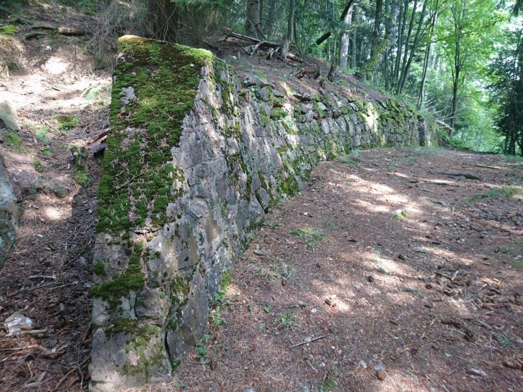 Le champ de bataille du Linge (1ère partie) Dsc_0215