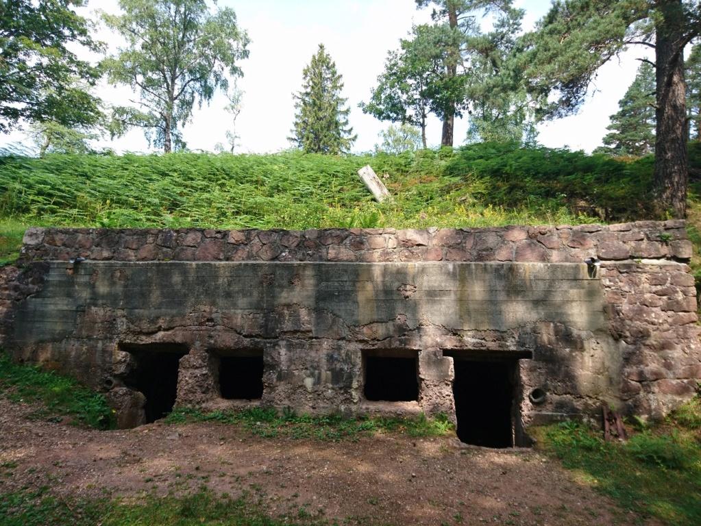 Le champ de bataille du Linge (1ère partie) Dsc_0218
