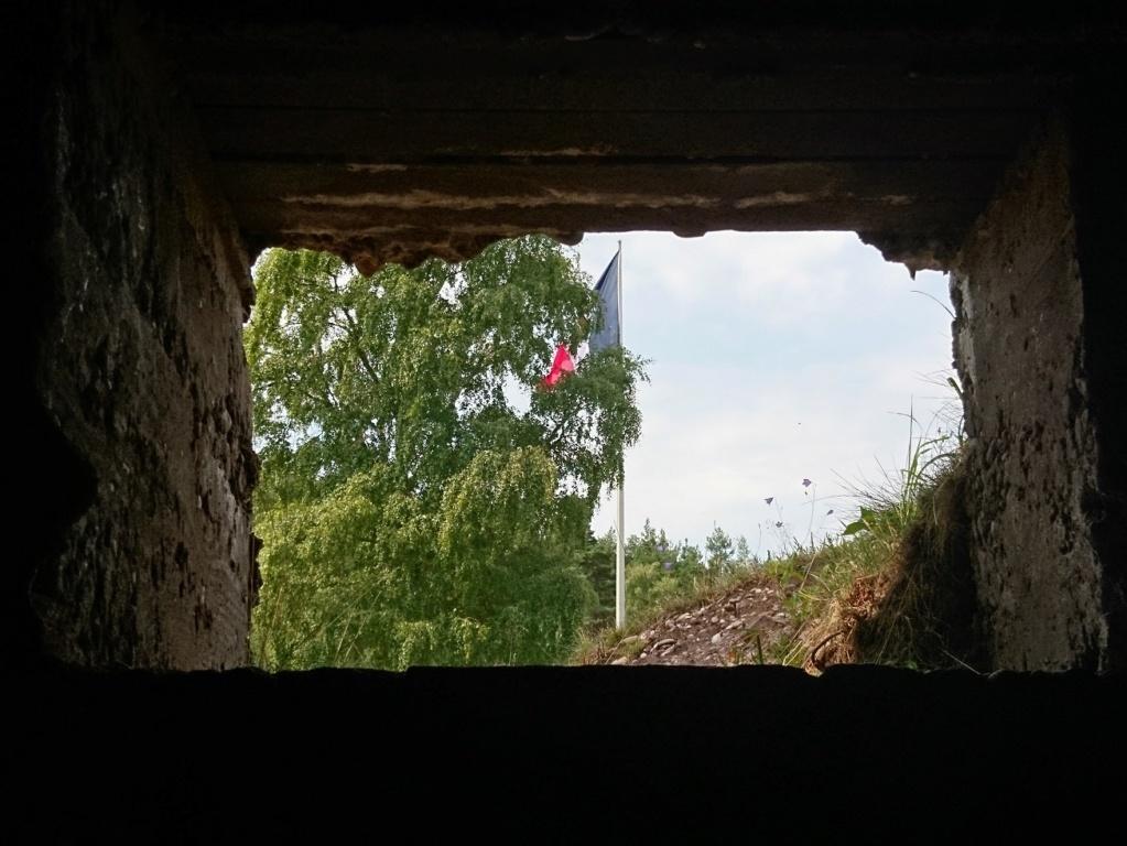 Le champ de bataille du Linge (1ère partie) Dsc_0219