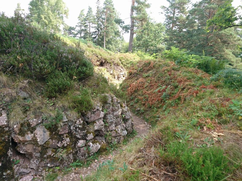 Le champ de bataille du Linge (1ère partie) Dsc_0221