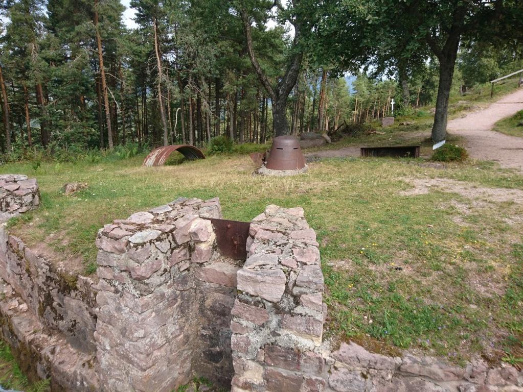 Le champ de bataille du Linge (1ère partie) Dsc_0222