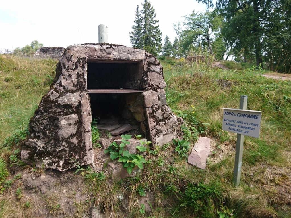Le champ de bataille du Linge (1ère partie) Dsc_0223