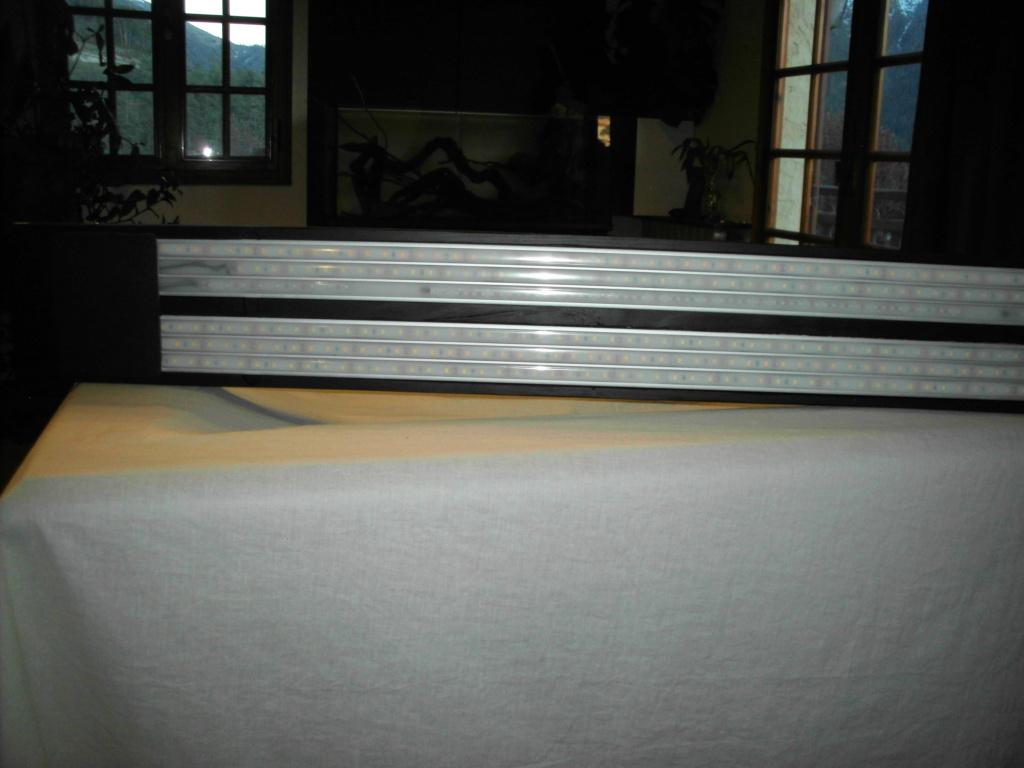 Amazonien 250L Imag0441
