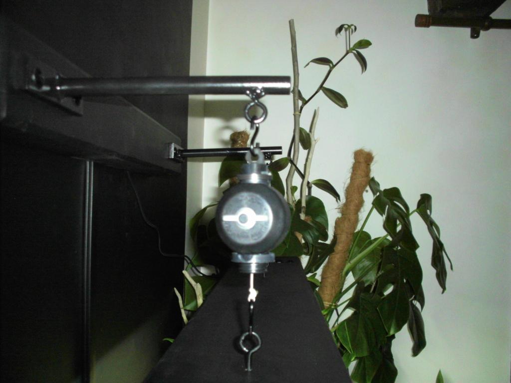 Amazonien 250L Imag0511