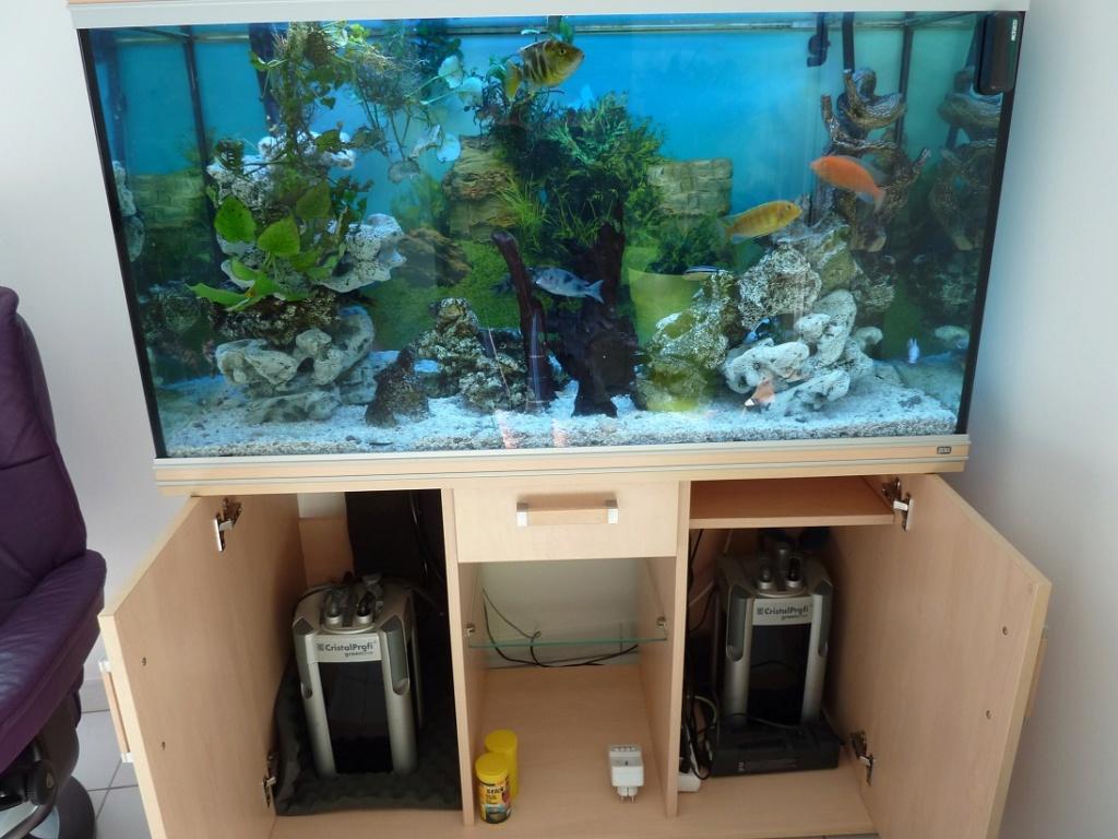 mon aquarium 00417