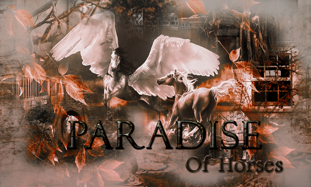 Paradise of Horses Proba10