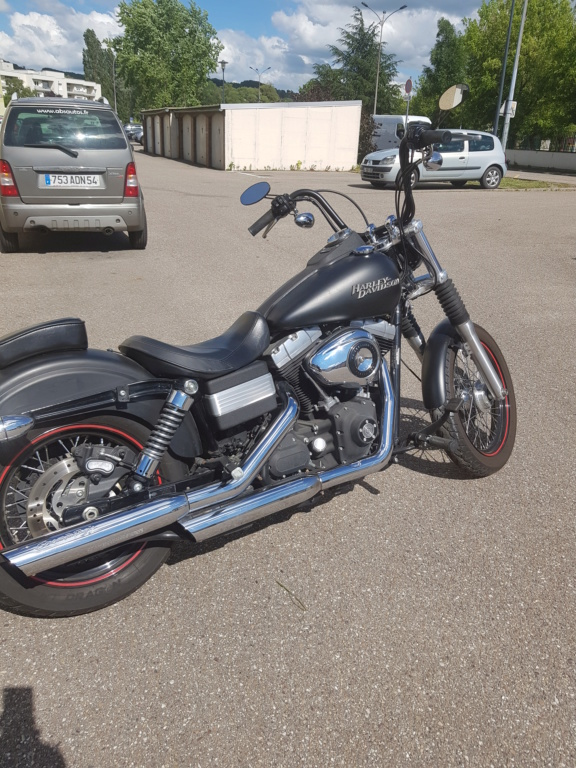 Harley street bob  20190611