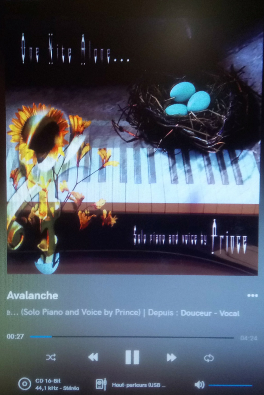 DAC Musician Pegasus Dsc_2214
