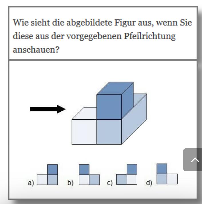 Rätsel und Denksportaufgaben Form_e10