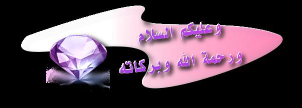 L'apprentissage Salamd11