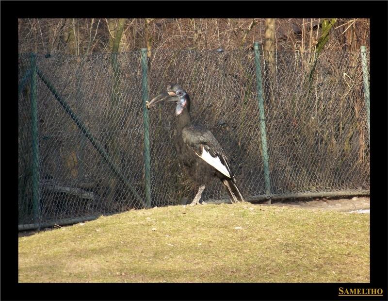 Le zoo de Munich Munich19