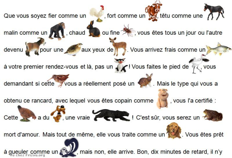 LES EXPRESSIONS ANIMALES !! 2011