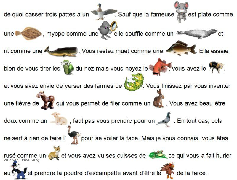 LES EXPRESSIONS ANIMALES !! Expres12