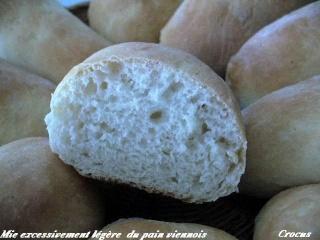 Petits pains viennois ( base d'une recette de Esther B ) P1090916