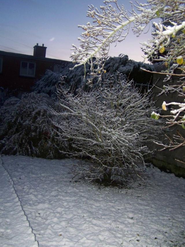 Le temps Neige_10