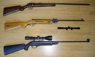 Munitions pour carabine de jardin Mes_ca10