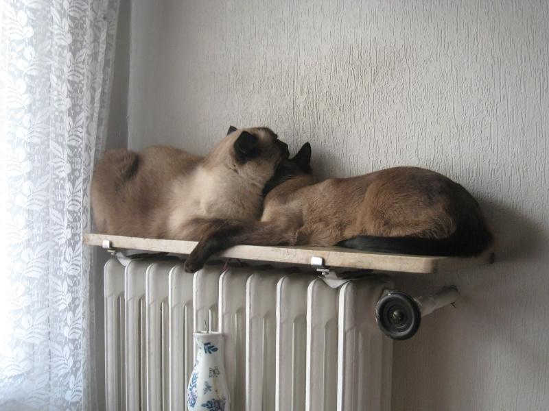 Nous et le radiateur... Octobr10
