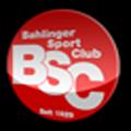 [Amical] FC Mulhouse / Bahliger SC le 24/07/2009 Bahlin10