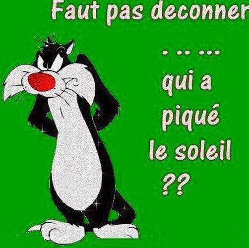 Les bonjour et bonsoir ! - Page 13 42487311
