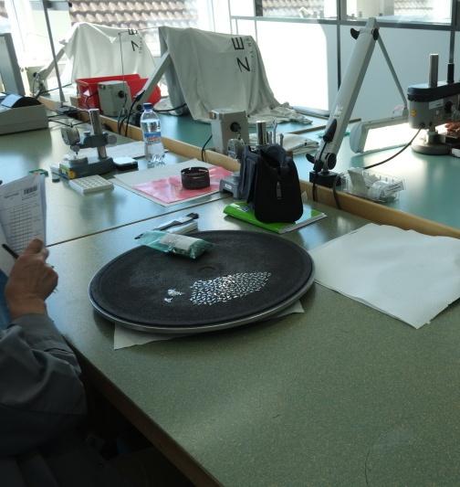 Compte rendu de la visite de la manufacture Zénith  Untitl10