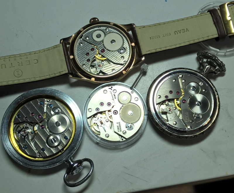 Demande d'aide pour offrir une montre gousset  02411