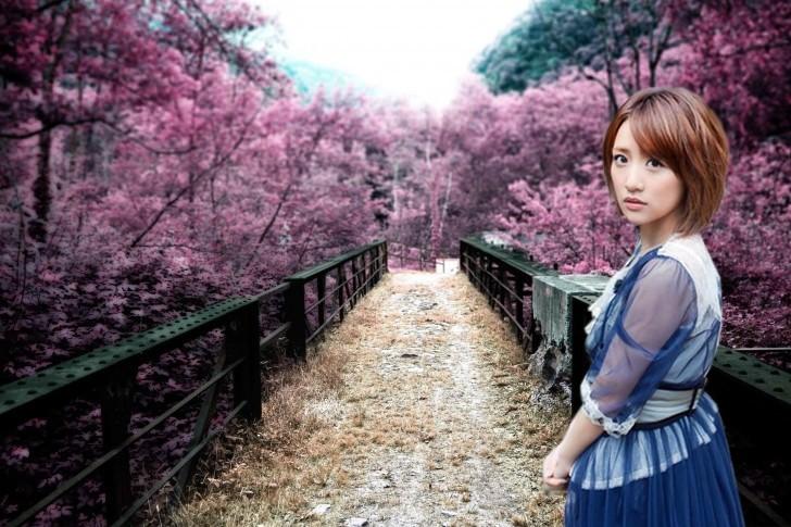 Sakura no hanabira - Page 2 14251g10