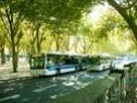 Réseau TBC de Bordeaux Imag0212