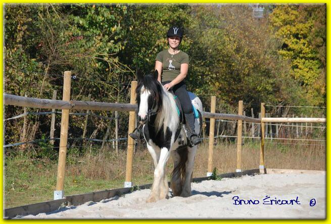 Une photo de vous et votre cheval - Page 2 Pegase10