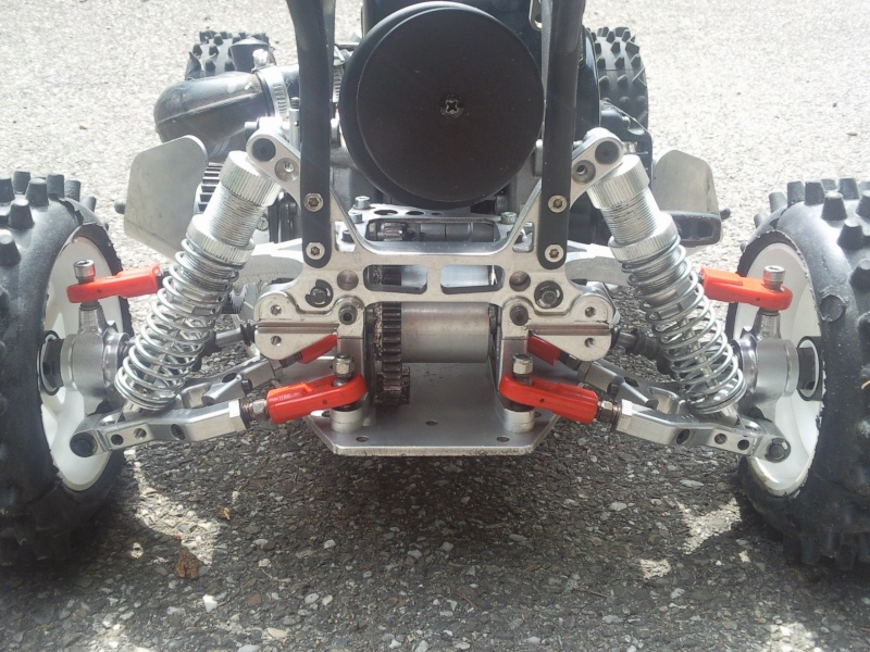 MON LEOPARD by Mcfly_67 - V8 Engine Photo161