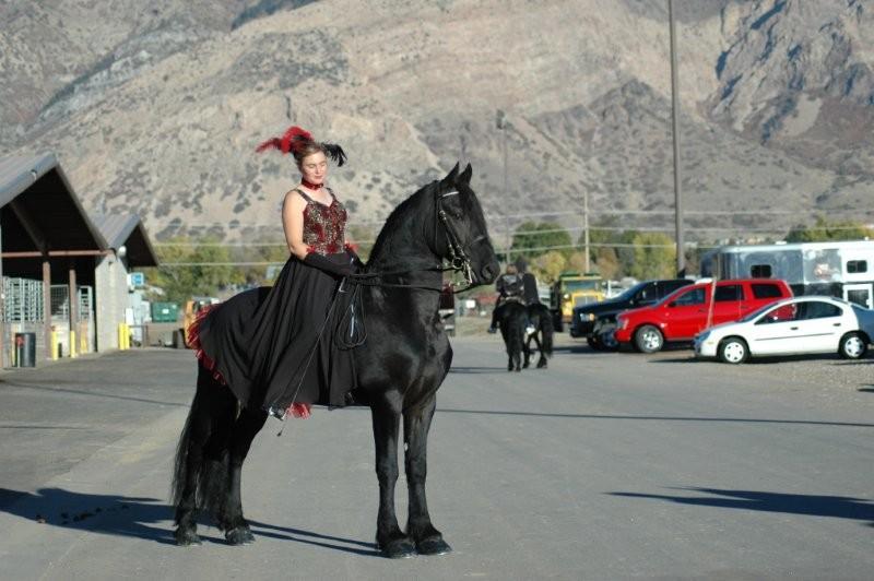 Une photo de vous et votre cheval - Page 5 Dsc_0810