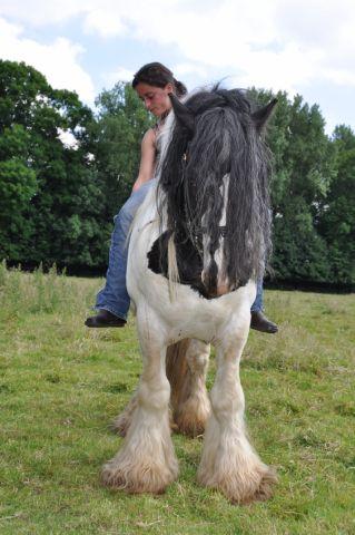 Une photo de vous et votre cheval - Page 4 14_jui11