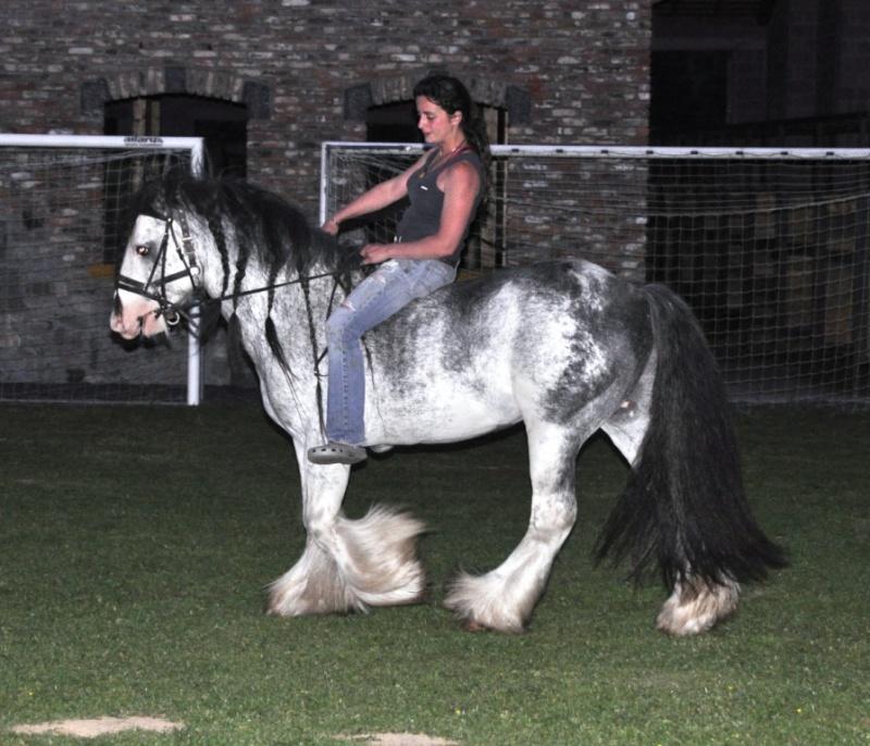 Une photo de vous et votre cheval - Page 4 Tine_o11