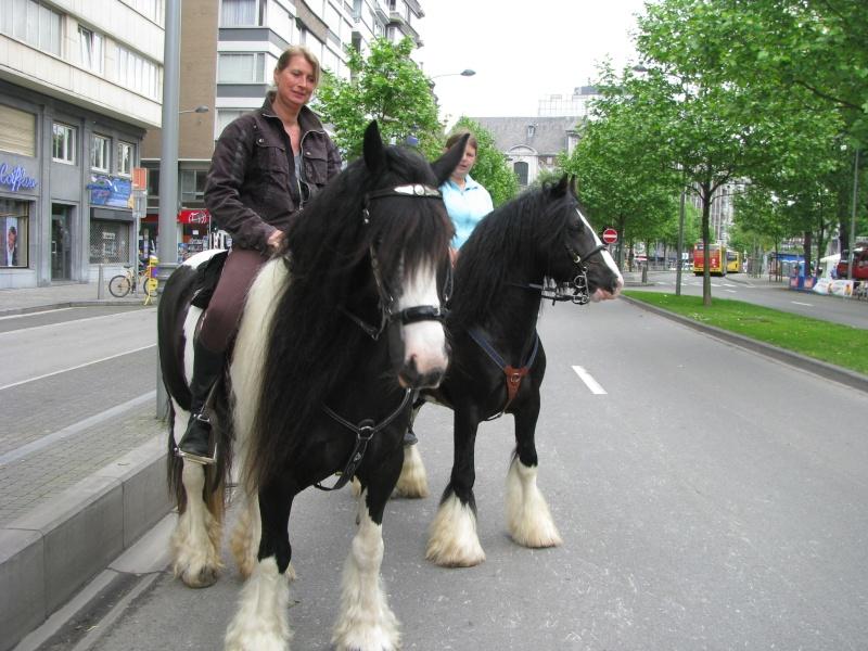 Une photo de vous et votre cheval - Page 5 01110