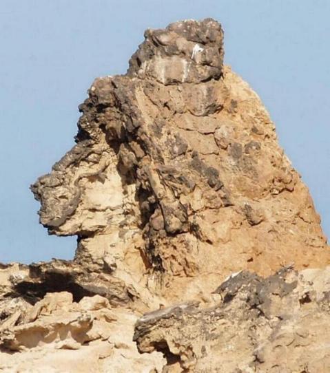 Surprise! Sphinx14