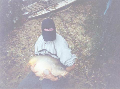 JB34 ... quelque poissons Cdh10