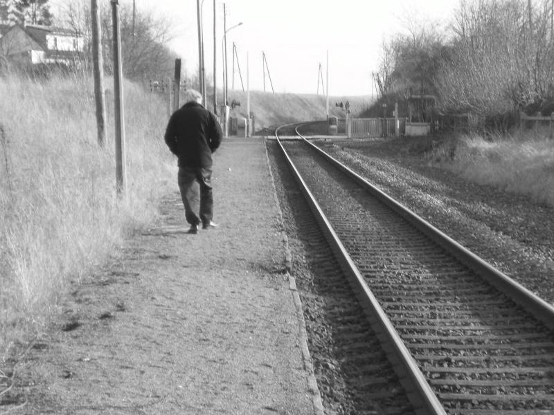 L'inconnu de la halte P1010119