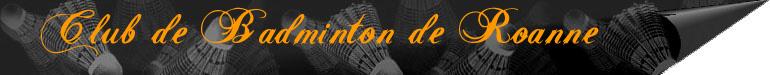 Forum du badminton à Roanne