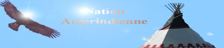 Les Bannières du Cercle de Samsara Nation10