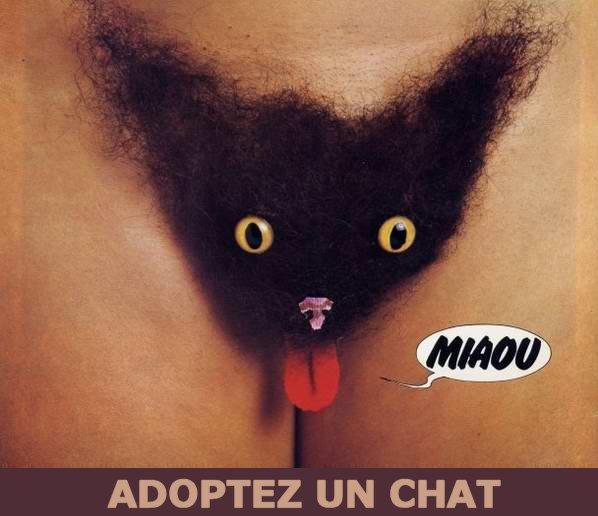 Enfin une qui nous montre sa chatte !!!!!!! Miaou10