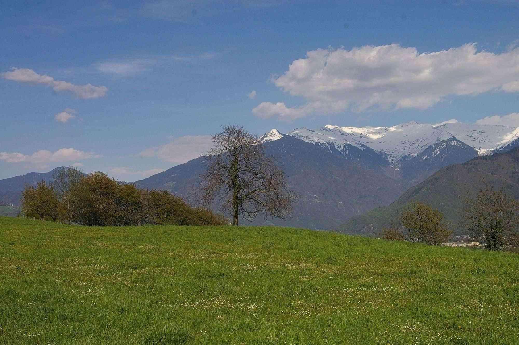La Route des Grandes Alpes - Page 7 Sans_439