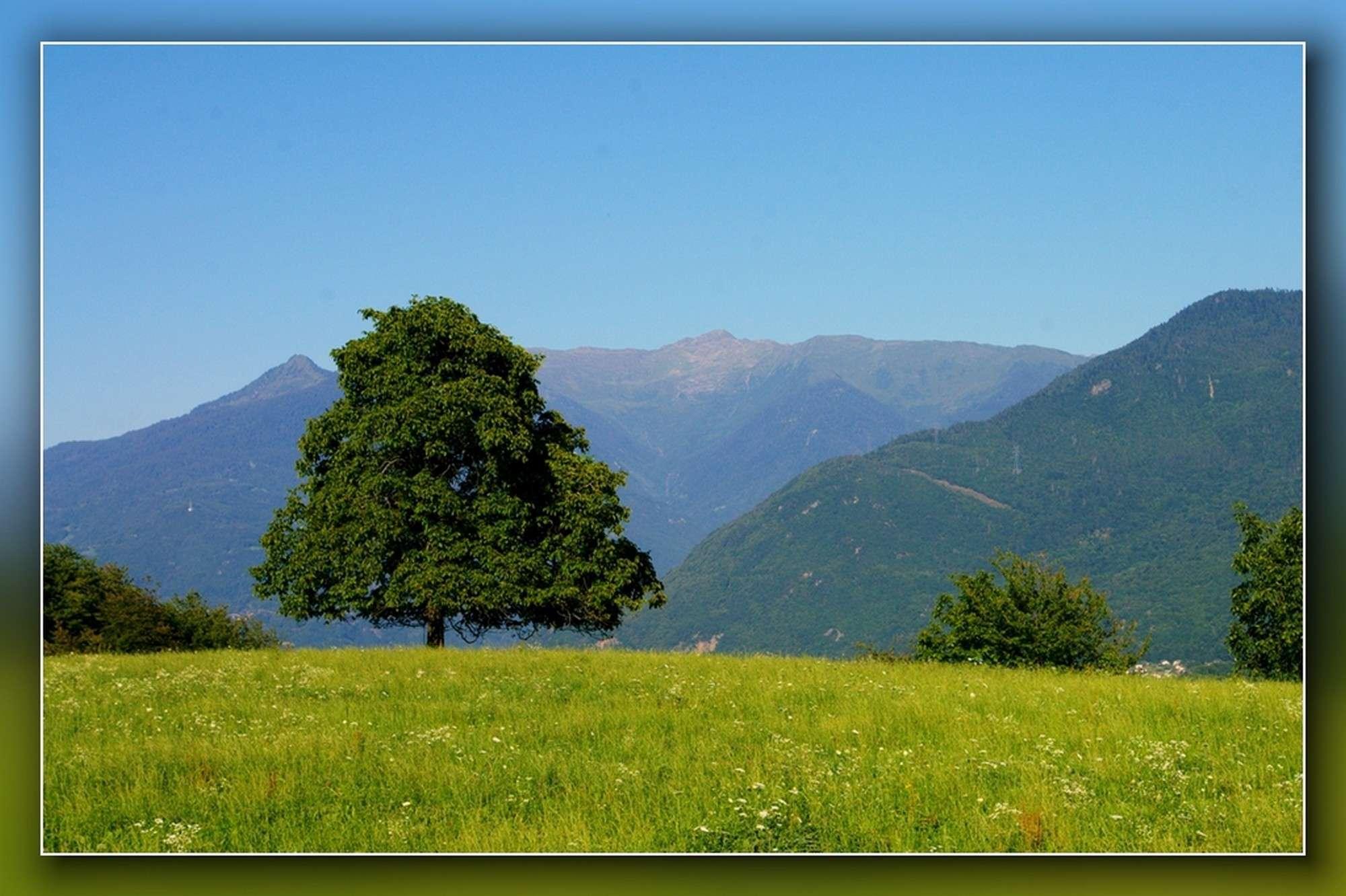 La Route des Grandes Alpes - Page 7 Sans_440