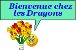 Bonsoir Dragon25