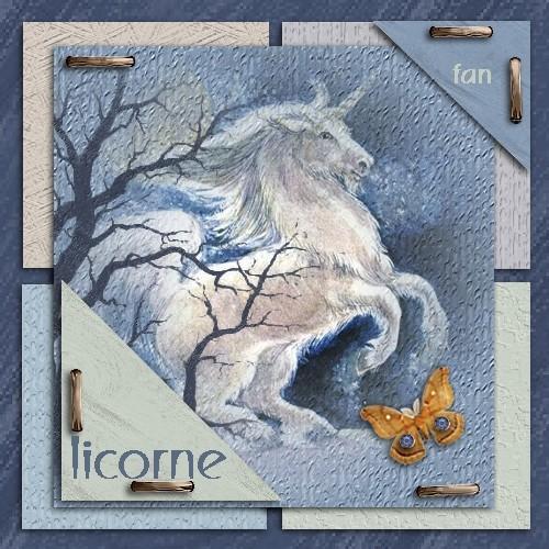 03 - Divers thèmes Licorn10