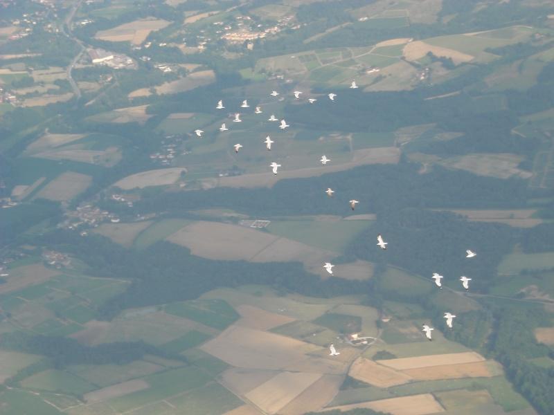 Quelques photos depuis un planeur Dscn0017