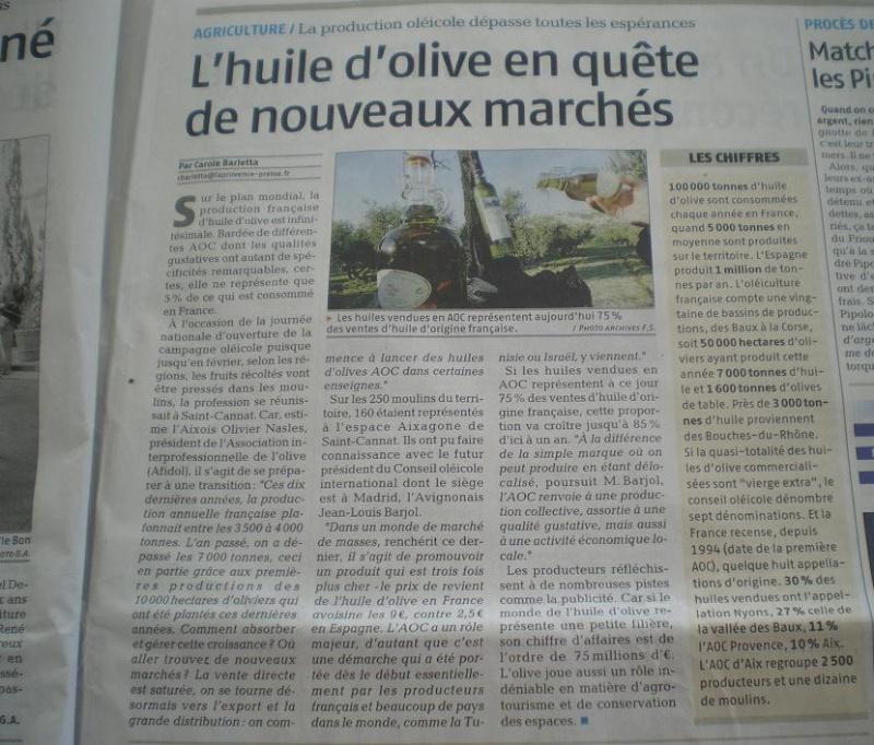 LA VEGETATION MEDITERRANEENNE - Page 2 Imgp8129