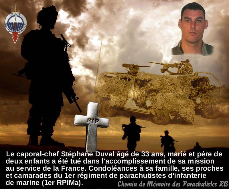 Mali opération SERVAL - Page 3 15_rup11