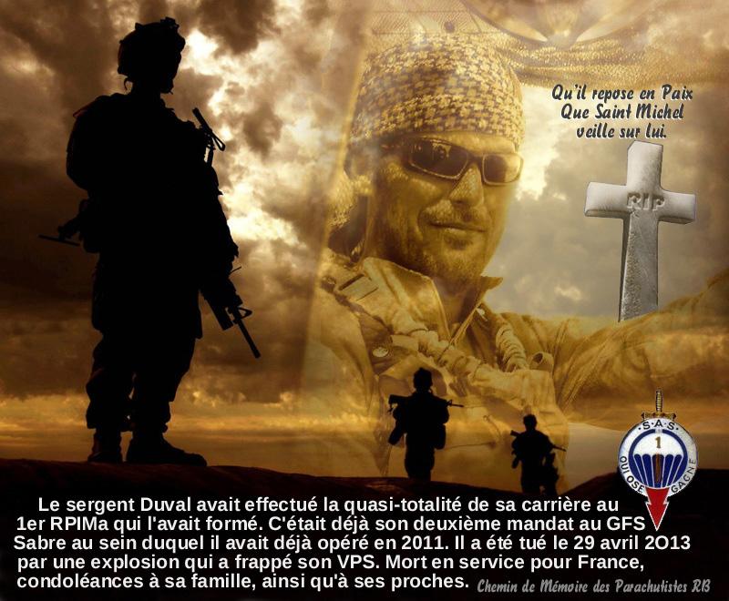 Mali opération SERVAL - Page 3 16_par11