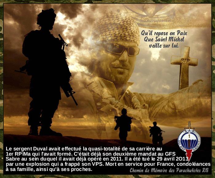 Mali opération SERVAL - Page 3 2_para11