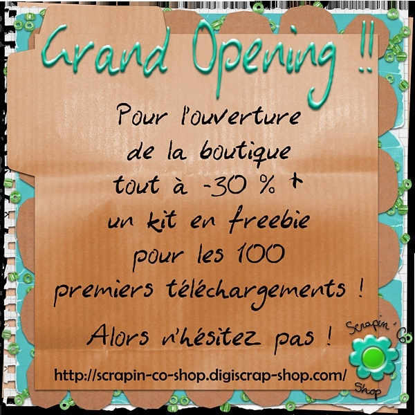 Nouvelle Boutique Scrapin'Co Shop ! Img-0011